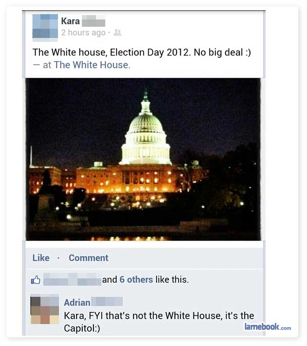 Electoral Idiots