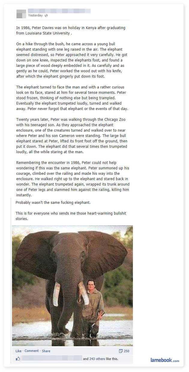 Truly Heartwarming