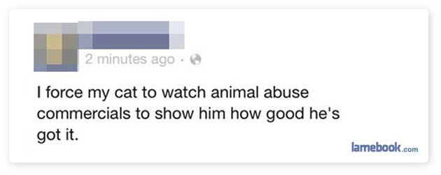Pet Lessons