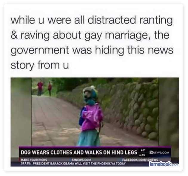 REAL NEWS