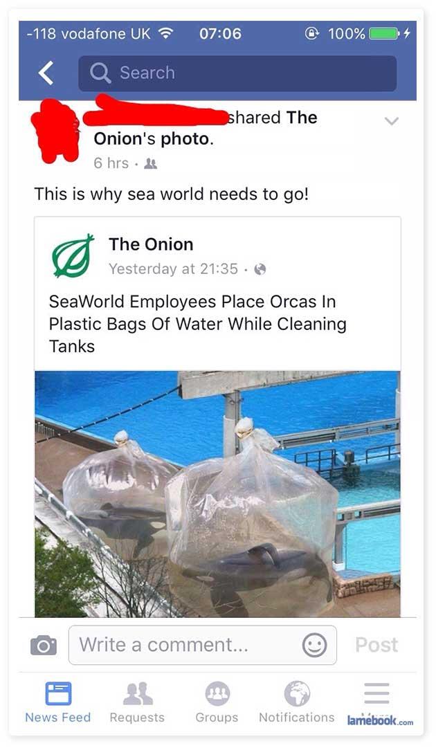 The Onion Strikes Again