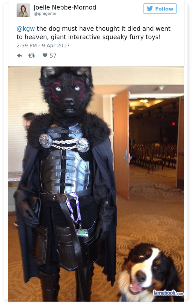 Furry Con Mom 2